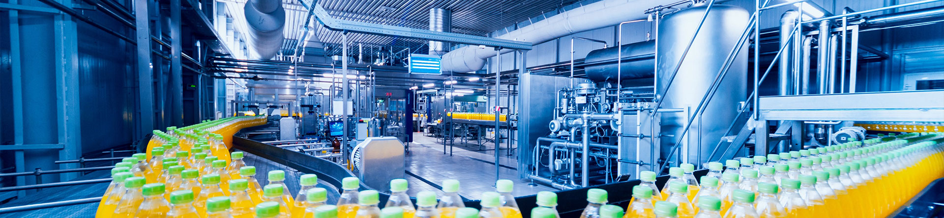 Protecting... Production Lines